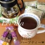 11/6 本日のハーブティー☆